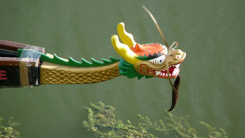 Dragon Boat: The Florence 2018 Festival